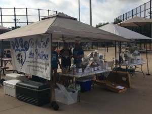 volunteers softball tourn